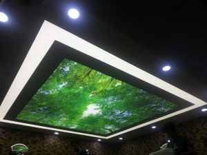 gergi tavan motif, osmanlı motif,gergi tavan, gergi tavan modelleri, gergi tavan görselleri, 3d gergi tavan,3d barisol, 3d barrisol, 3dstretch ceiling,3d spanndecken